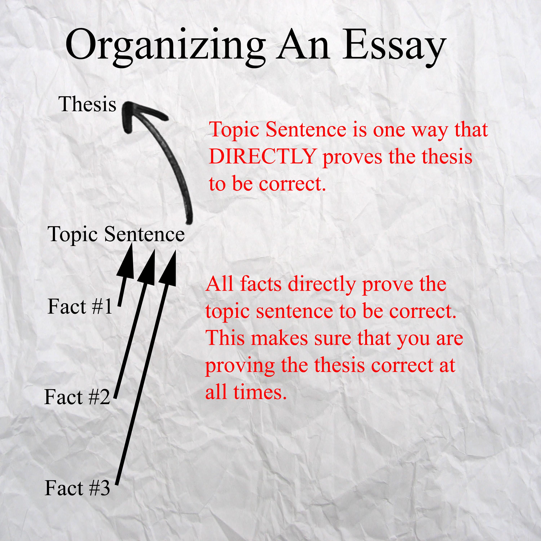 Organizing An Essay